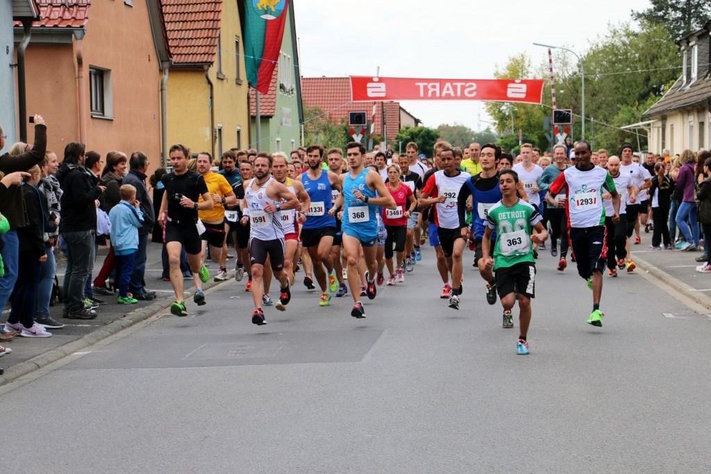 Beliebter Sport-Nachmittag: Beim Wiesentheider Kirchweihlauf gingen wieder rund 400 Läufer an den Start und drehten ihre Runde auf den Straßen der Marktgemeinde. Besonders die Jüngsten legten sich mächtig ins Zeug.